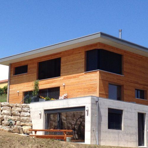 Maison individuelle à Chevilly (4)